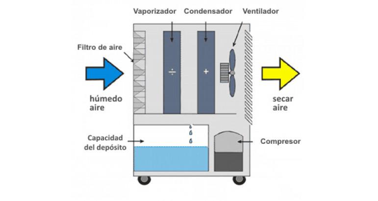 Así funciona un deshumidificador Master DH721