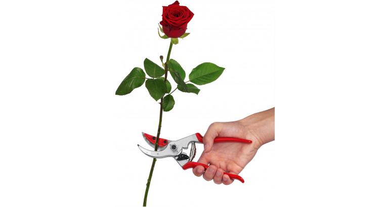 Comprar online tijeras para podar rosas y flores Felco 4 C&H
