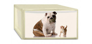 CAJA ORDENACION PHOTOBOX M PUPPY