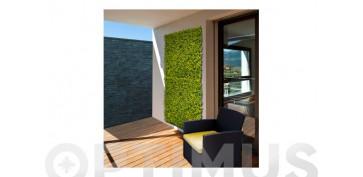 Cercado y ocultacion jardin - JARDIN VERTICAL BUXUS1 X 1 M