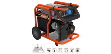 Generadores gasolina - GENERADOR GENERGY MULHACEN 6,2 KVA 2013024